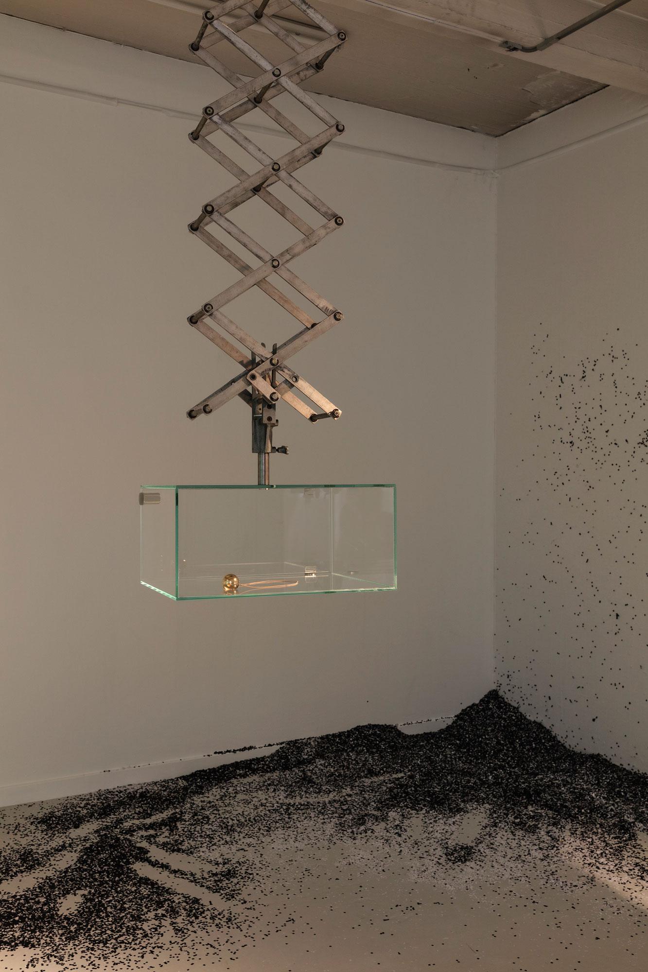 Molly Haslund: Klovnenæse/uventet adfærd, Installationsfoto, 2019. Foto: Dorte Krogh