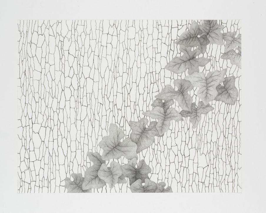 Ugens kunstner: Maria Finn