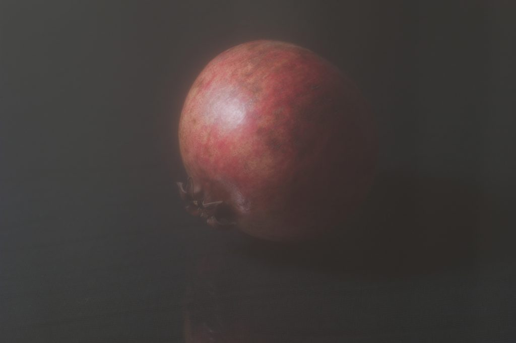 © Morten Andenæs_The Fruit of the Dead_2019