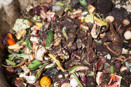 Biennale sætter spot på stoflige transformationer