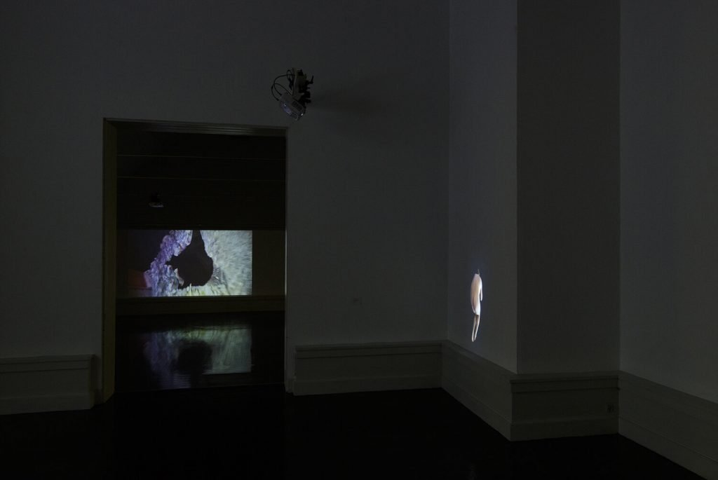 Installationsvue, Kunstnernes Efterårsudstilling 2020. Her ses bl.a. Pål Lersveen. Foto: I DO ART Agency.