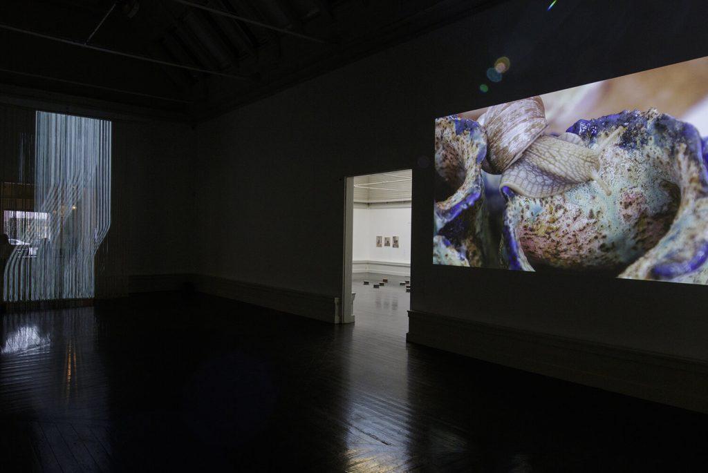 Installationsvue, Kunstnernes Efterårsudstilling 2020. Her ses bl.a. Davide Hjort Di Fabio og Mihkel Pajuste & Mariliis Kundla. Foto: I DO ART Agency.