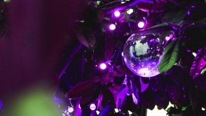 Ny københavnsk festival sætter fokus på fremtidens kunst- og kulturbranche