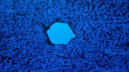 5-Klang: Ud af det blå – Kunsthal Vejle