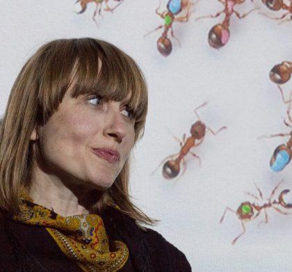 Symposiet EARTHBOUND vil undersøge planetens tilstand gennem kunst og videnskab