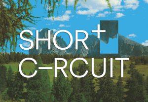 Short Circuit – Terminal 3