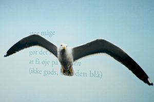 Nye alfabeter: Jacob Juhl og Gerd Laugesen