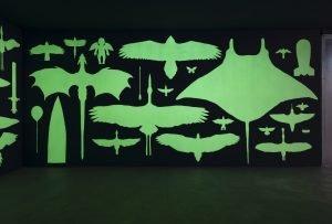 Mark Dion: Wunderkammer 2 – mirabilia