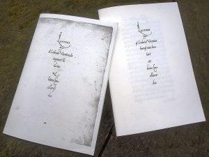 Bent Rohde: Kalligrafisk Lyrik