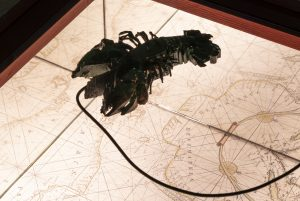Navigeringer – på kanten af en verden i forandring